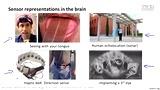 机器学习08.2-NeuronsAndTheBrain