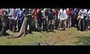 乌干达捕获一顿重食人巨鳄 80岁高龄已吃6人-新蓝网-视频-娱乐-新闻