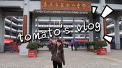【tomato】tomato's vlog#1归来仍是铁山人