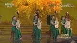 2020元宵戏曲晚会:苏州大学表演苏州评弹《绽放》