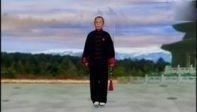 李德印演练42式太极剑