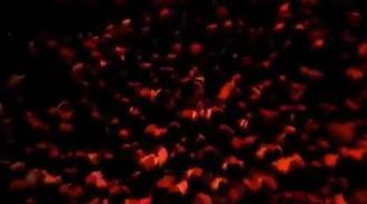 周杰伦演唱会《最后的战役》粉丝尖叫不断