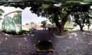 我的澳门风云旅游VR视频