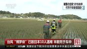 """[中国新闻]台风""""博罗依""""已致日本10人遇难 半数死于车中"""