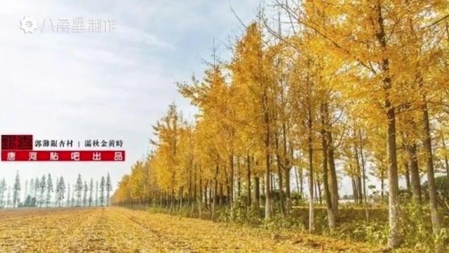 美丽乡村我的家——上庙(八角星视频制作)