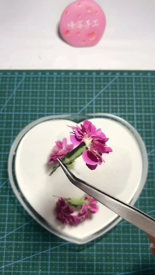 鲜花放入干燥机三天取出,美美的干花