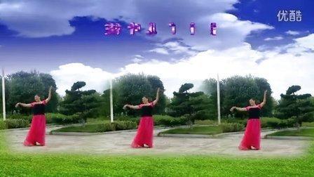 枝叶儿原创广场舞《草原上升起不落的太阳》局部抠像