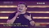 刘欢演唱《台湾同胞》,深情遥望我国宝岛台湾,日月潭碧波在心中荡漾