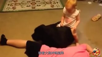 这是一张可以让小孩骑在背上的犬