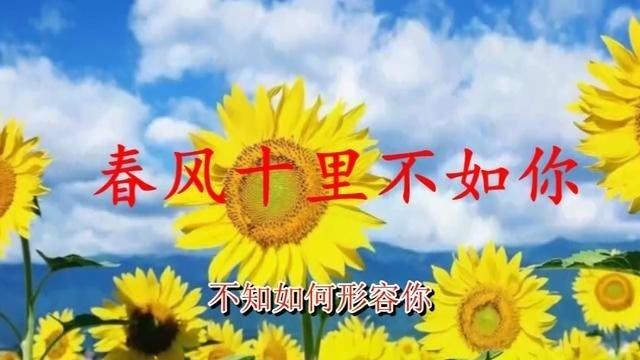 《春风十里不如你》唱出了淡淡的忧伤!
