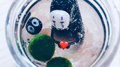 MARIMO 幸福球藻开箱 平价好养的桌面绿植