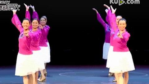 子龙老师原创第四套百姓健身广场舞《美丽的草原我的家》正面表演