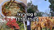 【lxy】lxy'vlog 8|11.18-11.24|和我度过一周吧|study with me|一人食|烤肉饭|酸菜肉丝面|石锅饭|图书馆