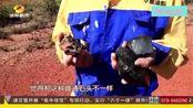 小伙意外捡奇石 疑是陨石?可卖数百万美金?