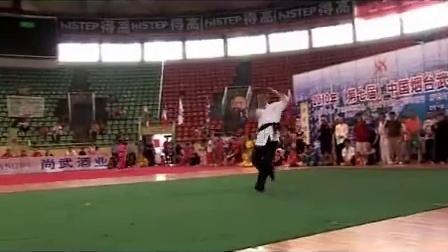 七星螳螂拳(于天路)