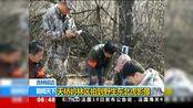 吉林延边:天桥岭林区拍到野生东北虎影像