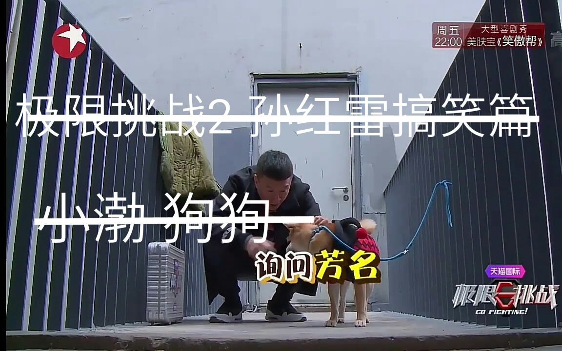 极限挑战2 孙红雷搞笑片段