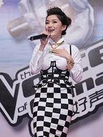 中国好声音三亚沙滩音乐节