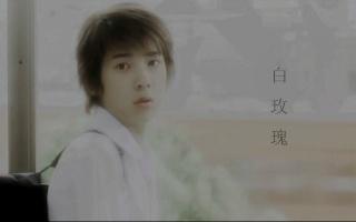 【Y2】白玫瑰(吉本荒野X有明功一/栉森秀一)慎