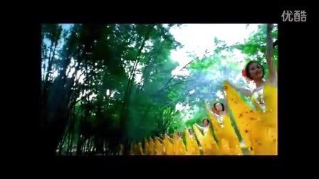 绝美风景《月光下的凤尾竹》葫芦丝音乐意境叹为观止