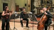 【弦乐三重奏】巴赫/莫扎特 Adagio e fuga n.1 KV 404a丨Il Furibondo