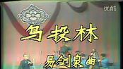 高胡演奏家刘天一视频