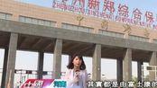 """台媒实地探访河南有座国际""""苹果城"""",让中原大地焕发新春!"""