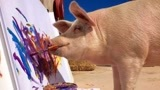 """惊奇!南非猪会画画 """"猪中毕加索""""画作已卖出4000美元"""
