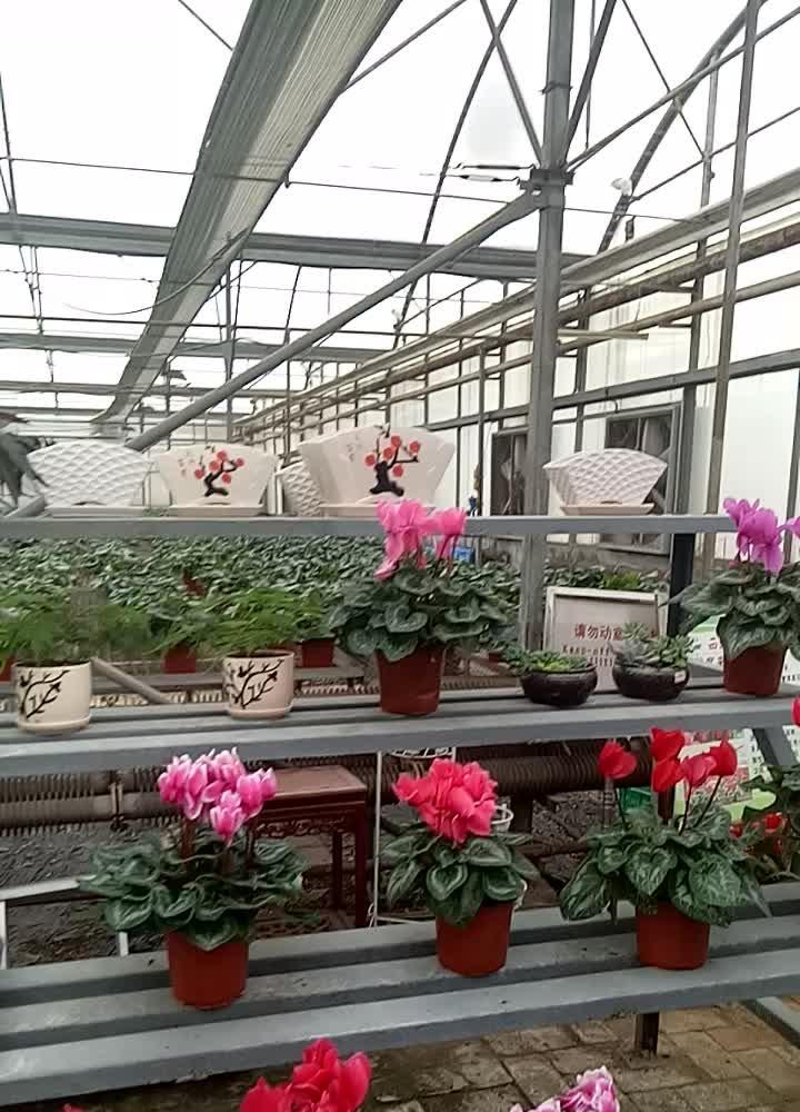 杨凌新天地农业科技示范园,美的不要不要的