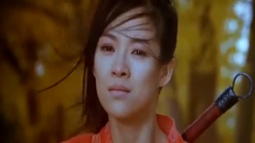 张曼玉章子怡这一段《英雄》中打斗,画面堪称唯美