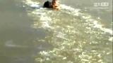 狗狗被困冰湖 英雄小伙用拳头破冰砸出道路施救