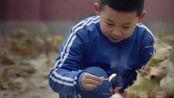 姥姥的饺子馆:方达捡到一个火柴盒,把树叶点燃了!