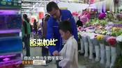 爸爸回来了:王元也小小年纪竟当起了翻译家