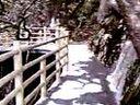 明月山2010-03-27 (9) (2)