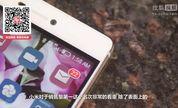 【独播】「科技龙卷风」华为OR小米 谁是智能手机出货量之王?