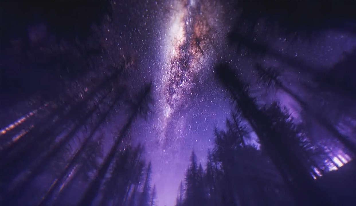 360°像落叶一样渴望荒野