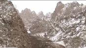 青海:祁连山雪后上千只岩羊现身