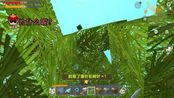 迷你世界挖矿兄弟256:今天我们永远地失去了松果林