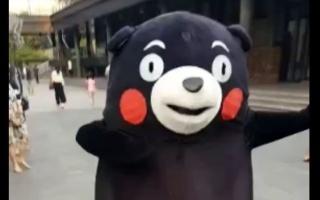 (章毛毛)熊本熊的迷之穿梭(ó