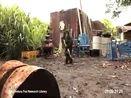 当猩猩因为你的玩笑拿起机枪对你扫射时,《猩球崛起》不只是个玩笑(1)