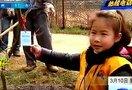 南京 零距离小记者:让我和小树一起成长