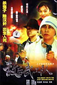 敌后武工队 1999版(国产剧)