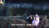 宫心计2:郑纯熙并不是元玥的亲姐姐?元玥的姐姐真的去世了?