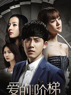 爱的阶梯 DVD版(国产剧)