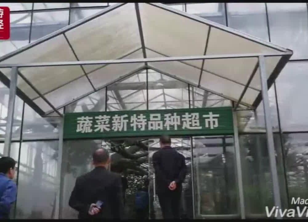 """巴中平昌""""立体特色农业""""带动乡村旅游热"""