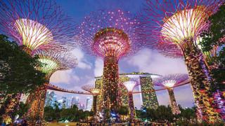 新加坡新地标 宛如阿凡达世界