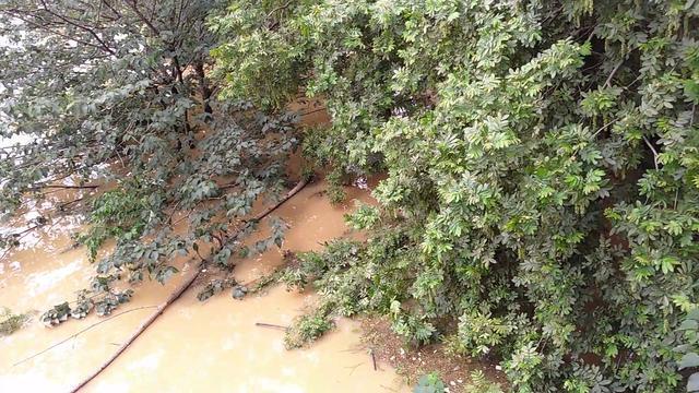 长沙市河西湘江一桥水位持续上涨,潇湘中路多处出现汛情