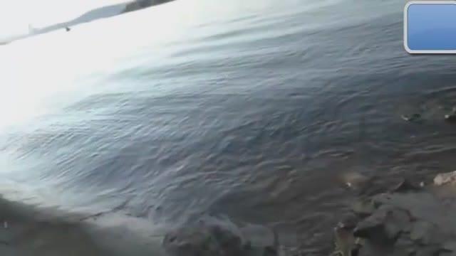 福建农村小伙海滩钓鱼无意拍到5米高不明物体,世界震惊!