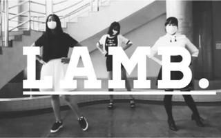 【正弦组】LAMB.