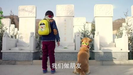 神犬小七 tv版预告 10